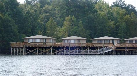 Santee State Park Cabin Rentals by 49 Best South Carolina Santee Cooper Lake Country Images