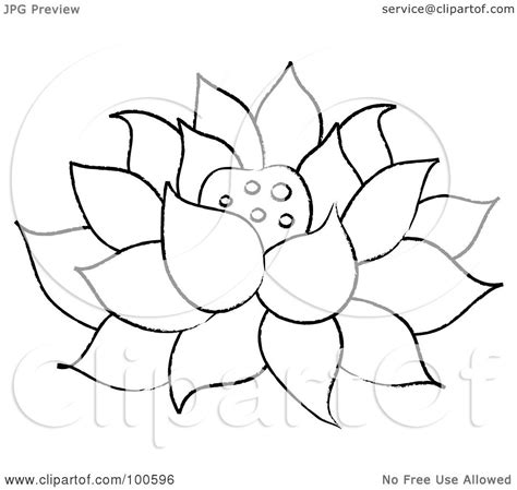 outline of lotus flower royalty free rf clipart illustration of a coloring page