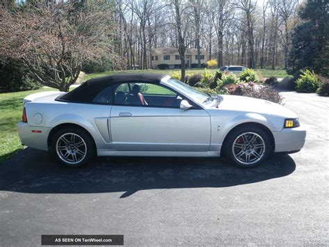 2003 ford svt 2003 ford svt cobra convertible