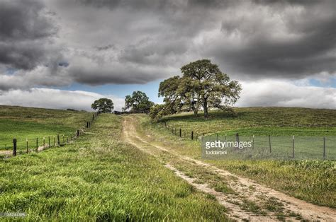 dirt road country road on the road again trees grey snow winter of nature country dirt road stock photo getty images