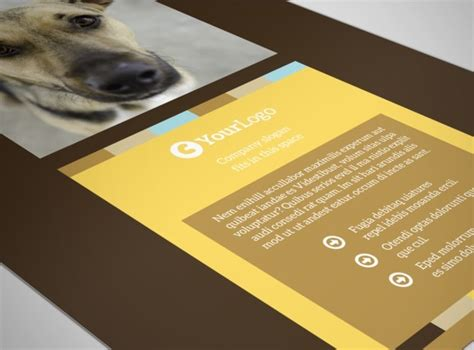 shelter template card animal shelter pet adoption flyer template