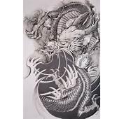 Tatuaje De Dragon  DISE&209OS DE TATUAJES