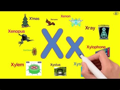 5 Letter Words With X And G mp3 words starting with x