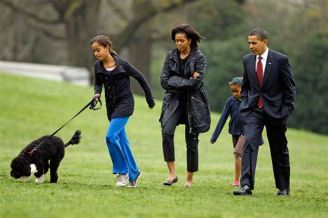bo white house dog michelle obama and bo obama photos photos the white house debuts the obamas new dog