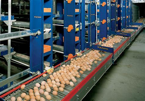 Jurnal Fermentasi Pakan Ternak Pdf cara ternak kelinci ternak ayam petelur pdf