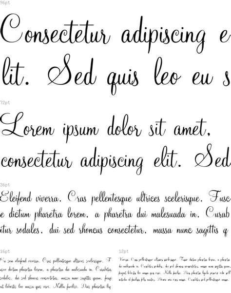 dafont xiomara 36 best images about fonts to buy on pinterest fonts