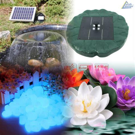 accessori per laghetti da giardino accessori laghetto da giardino tartarughe acquatiche