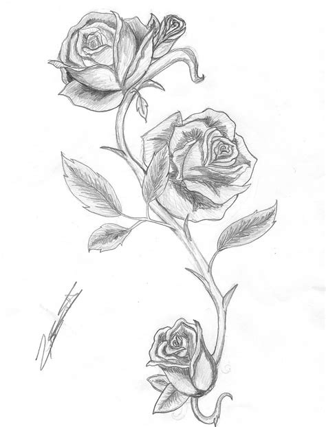 rose thorn vine tattoos and thorns by isalwaysinspired deviantart on