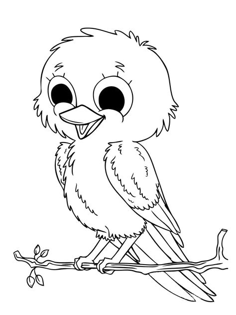 coloring pages birds realistic bird coloring pages bird coloring pages realistic kids