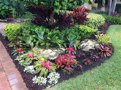 tropical backyard plants tropical bromeliad garden design my landscape designs