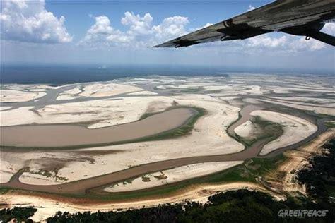 amazon drought heat stress linked  mass tree die