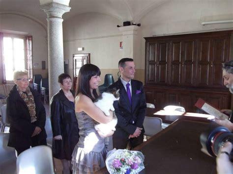 sindaco pavia pavia la gatta sindaco concelebra le nozze in comune 1