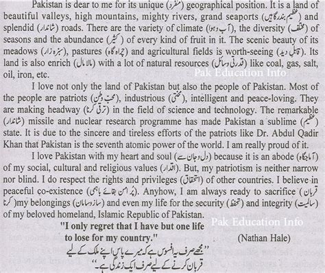 Essay On Patriotism For by Essay Patriotism Essay For 9th Class Patriotism Essay Essay Writing Experts