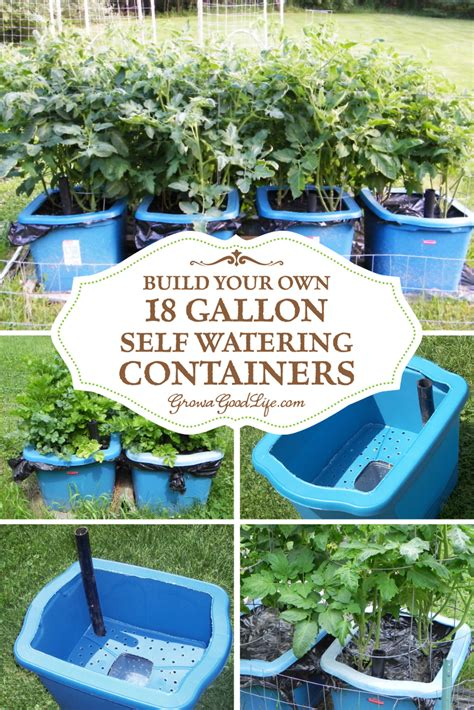 self watering container gardening build your own self watering containers gardens