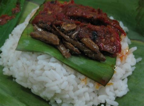 resep nasi kucing lezat khas jogja resep masakan kuliner