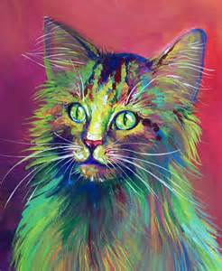 colorful cats colorful cat 5 by san t on deviantart