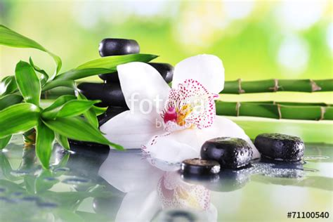 fotolia imagenes zen quot spa stones bamboo branches and white orchid quot stock photo