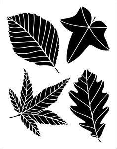 tropical leaf vector   wikki  vectorstock