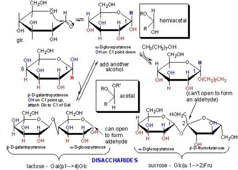carbohydrates organic chemistry organic chemistry the o jays and beans on