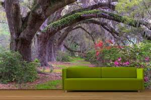 photo wall murals wallpaper enchanted forest wallpaper mural for living room
