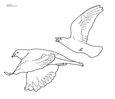 coloring pages of birds flying 7 best images of printable pictures of birds flying
