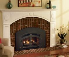 Wood Burning Stove Vs Fireplace Insert by Napoleon High Country Wood Burning Fireplace Insert Door