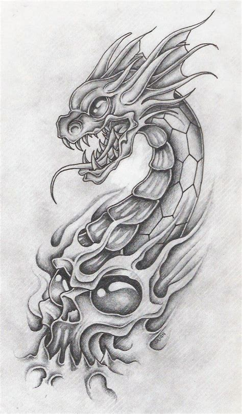 tattoo dragon and skull 89 best dragons images on pinterest dragon tattoos