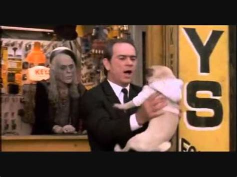 frank the pug from mib will smith meets frank the pug in black cutter