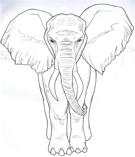 imagenes realistas artes visuales para dibujar elefante mural by wokenbladeriku on deviantart