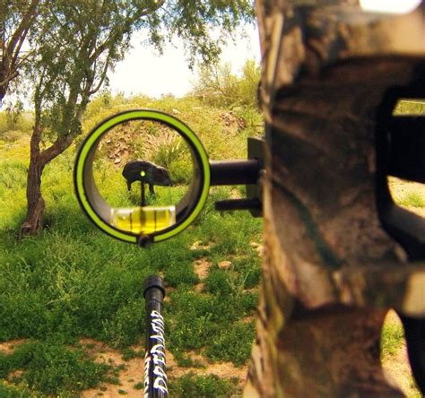 Best Single by Best Single Pin Bow Sight Reviews 2018 Tacxtactical