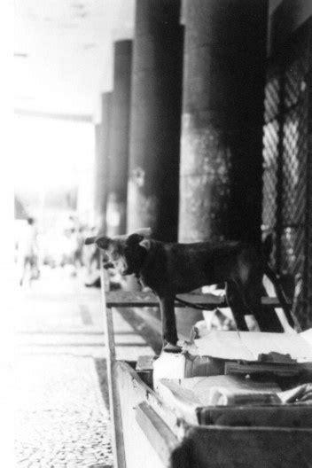 arquitextos 169.02 cidadania: A rua na pobreza e a pobreza