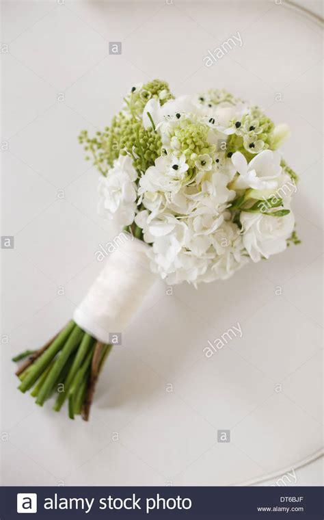 Cut Flowers Wedding Bouquet by A Wedding Bouquet White Cut Flowers Green Seed Heads