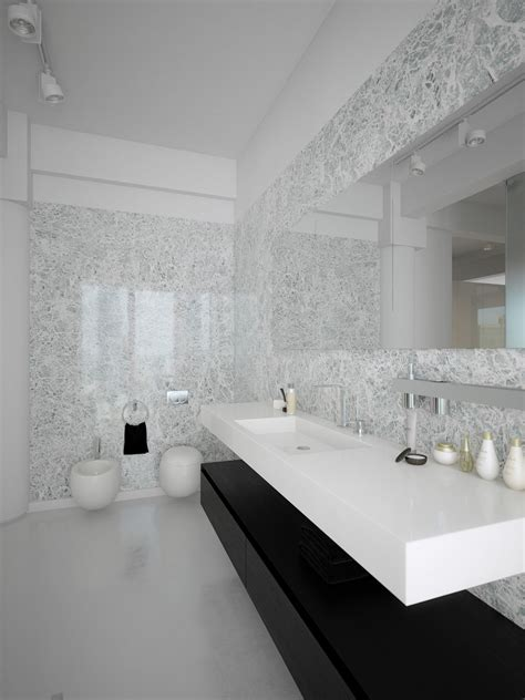 coolest minimalist modern bathroom design contemporary