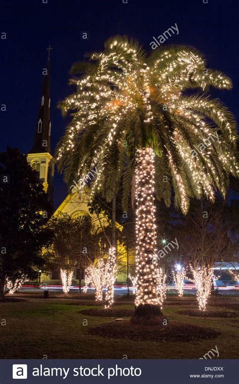 palm trees with lights palm tree with lights and citadel square baptist