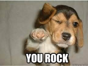 Dog Girlfriend Meme - it is awesome and you also rock puppy