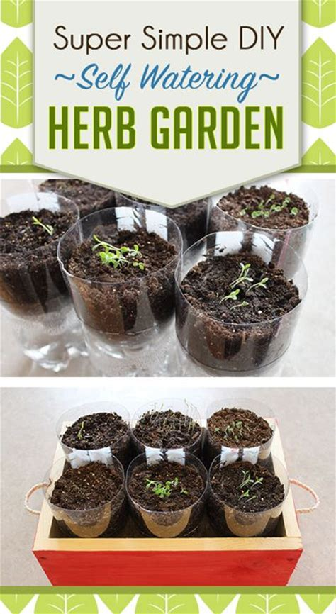 diy self watering herb garden 1000 ideas about herb planters on pinterest herb
