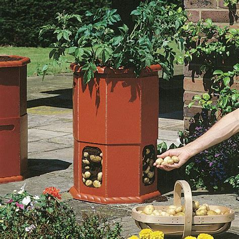 How To Build A Potato Planter Box by 80l Patio Potato Planter Barrel Gardener