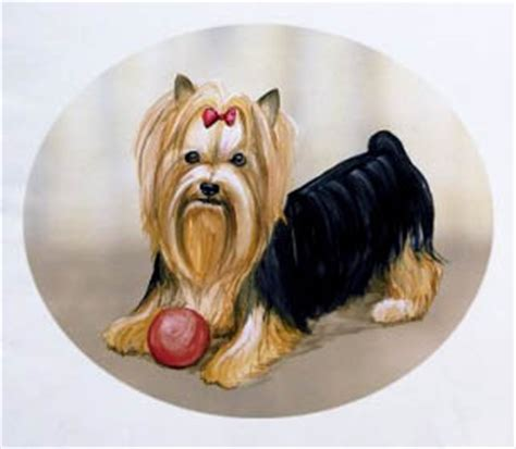yorkie gifts terrier apparel t shirts sweatshirts hoodies more