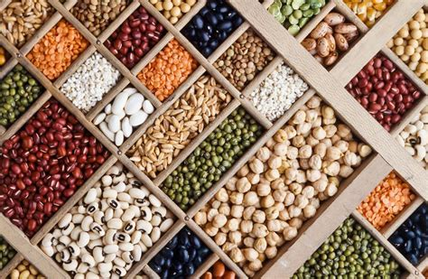 whole grains and legumes what are some sources of proteins for healthy living