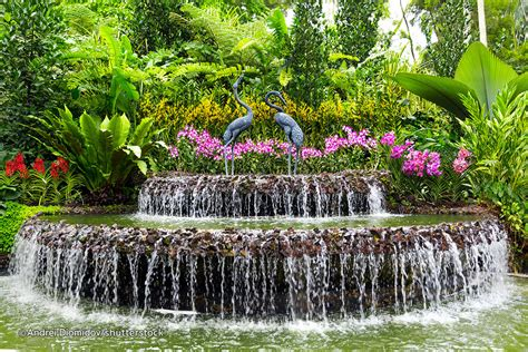Botanical Gardens Singapore Singapore Botanic Gardens Singapore Attractions