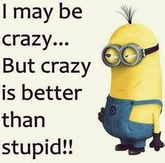 quotes  time minions quotes  funny minion