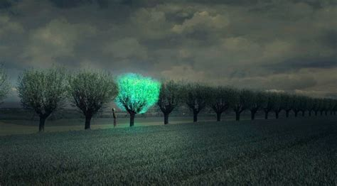 glowing green lights in trees future cities lit by beautiful bioluminescent trees big