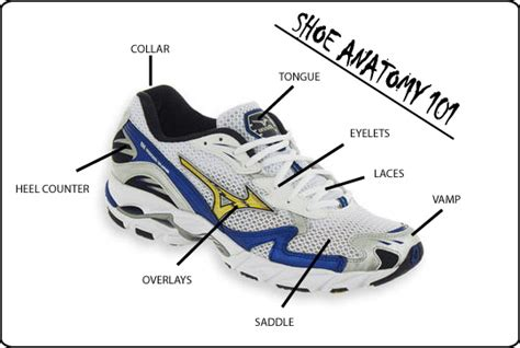 running shoe anatomy running shoes