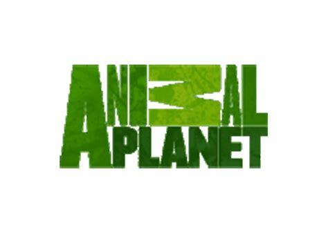 animal planet quiz animal planet logos quiz answers logos quiz walkthrough cheats