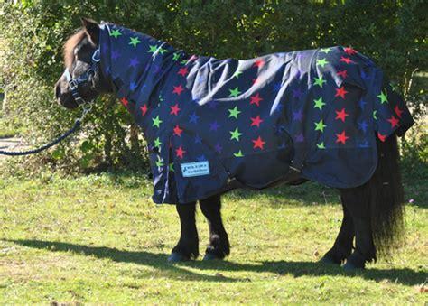 miniature shetland pony rugs for sale miniature shetland pony rugs for sale roselawnlutheran