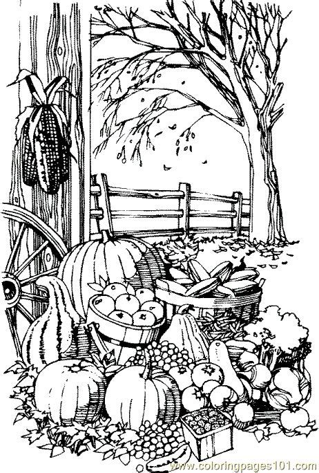 coloring pages for adults autumn fall coloring pages printable coloring pages fall