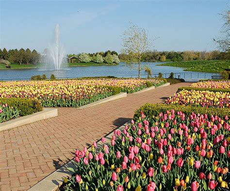 Botanic Gardens In Chicago Landscaping Ideas From The Chicago Botanic Garden