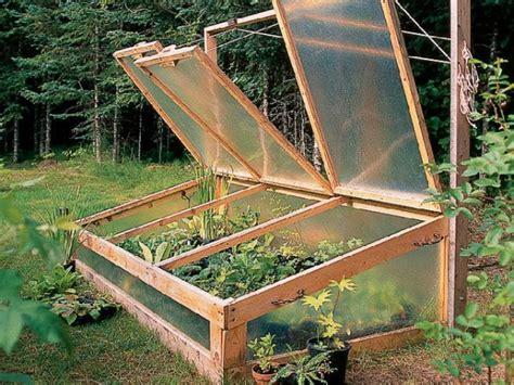 successful winter garden