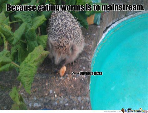 Hedgehog Memes - hipster hedgehog by iseekneegrow meme center