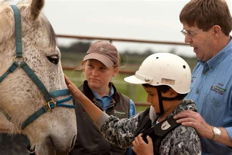 the equine assisted therapy workbook a learning guide for professionals and students books exploring the healing possibilities of equine therapy